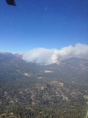 The Lion Fire continues to grow in the Sequoia National Forest.
