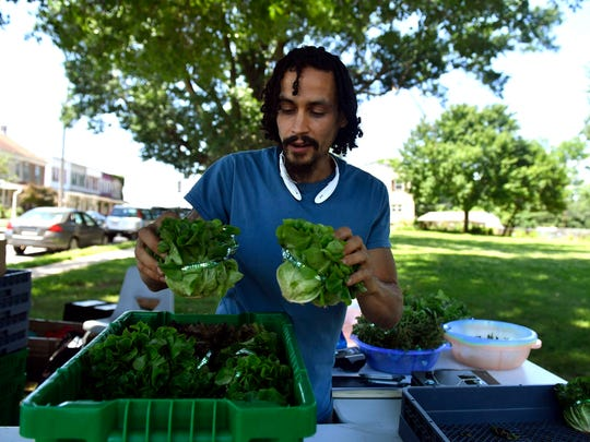 Erick Negron, the assistant farm manager at York Fresh Food Farms, puts produce away, Saturday, June 16, 2018. York Fresh Food Farms' new van allows the farm to sell its produce and fruits at different stops throughout York.
