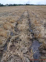 The city of Delafield and Gehl Farmland Investment recently agreed on future manure injection protocols.