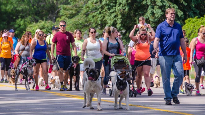 More than 600 people and their pets are expected to hit the pavement on Saturday for the Bay Area Humane Society's 16th annual PetWalk.