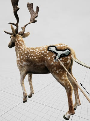 Estimated impact angle shown in relation to a deer for the hunting lesion found in the pelvis of an extinct fallow deer, killed by Neandertals 120,000 years ago on a lake shore close to current-day Halle, Germany.
