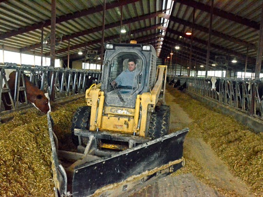 Austin McCulley operates a skid steer to push feed