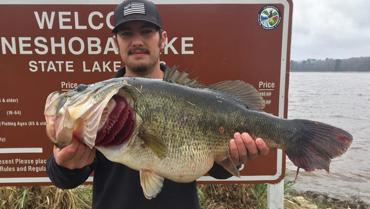 Don't miss these lakes for bass, bream and crappie