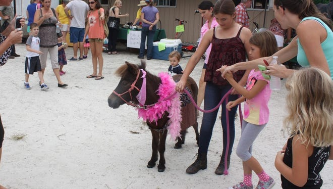 Equine Rescue and Adoption Foundation attracted thousands to it's first Country Festival in 2015. This year's event is Oct. 23 in Palm City.