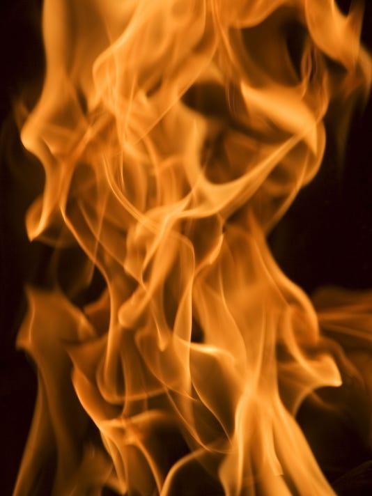 ELM 1101 FLAMES
