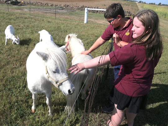 Nathan and Grace pet a miniature pony that will part