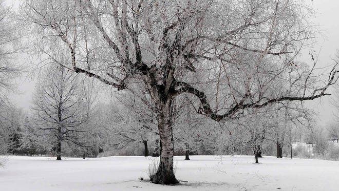 The Lansing area could get its first real blast of winter over the next few days, forecasters say.
