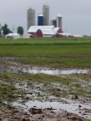 -APC Wet Crops SECONDARY.jpg