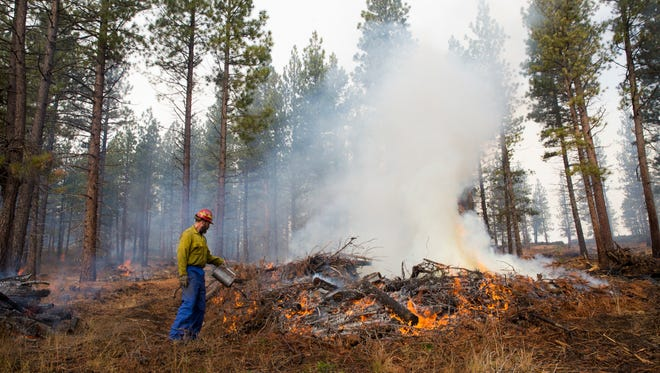 This Nov. 7, 2013, photo shows an unidentified worker burning a pile of collected undergrowth in the Deschutes National Forest in central Oregon.