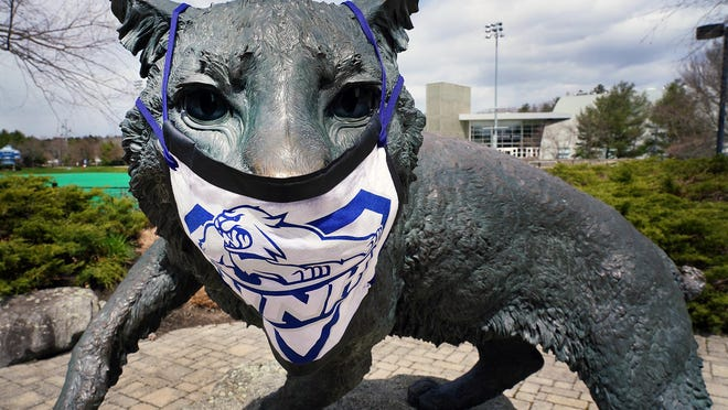 The University of New Hampshire Wildcat sculpture on the street side of Memorial Field, dons a face mask in April.