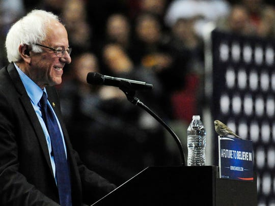 Democratic presidential candidate Bernie Sanders smiles as a bird lands on his podium when he addresses the crowd during a rally at the Moda Center in Portland, Ore., Friday, March 25, 2016.