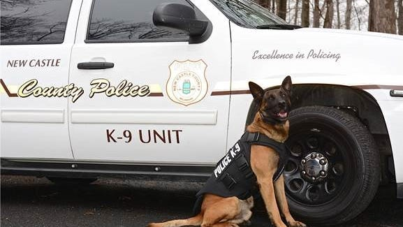 New Castle County Police K-9 Ace