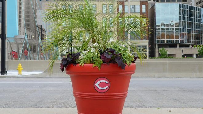 The Cincinnati Reds flower pot