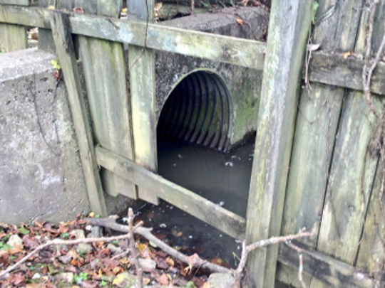 Michael Shaw is accused of crawling into this storm drain to flee police.