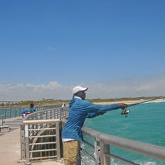 Environment news florida today for Sebastian inlet fishing pier