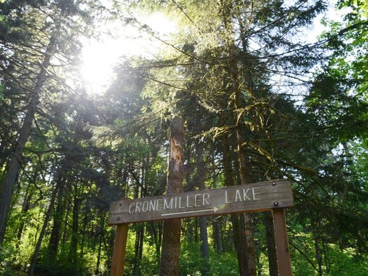 oregon top 5 best hikes within an hour of salem. Black Bedroom Furniture Sets. Home Design Ideas