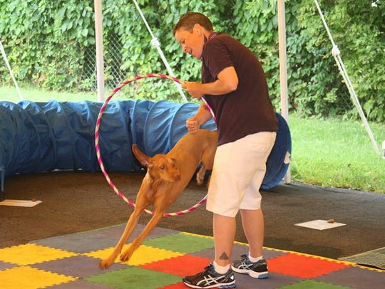 The 14th annual Dog Day of Summer will be held Aug.