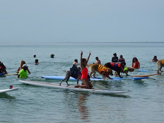0705-ynsl-furever-Surfing-Competitors-002-.jpg