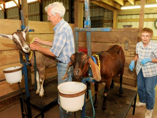 MAN n Goat Farmers 01.jpg