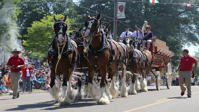 The Budweiser Clydesdales will parade through downtown York on June 14 and through Wrightsville on June 17 during their week-long stay in York County.