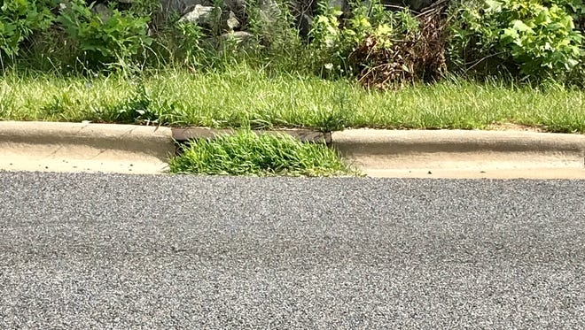 Some of the storm drains on Charlotte Highway at Mine Hole gap were overgrown with weeds earlier in July.