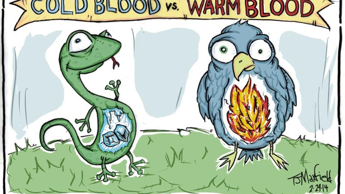 Kids Quiz: How are cold-blooded animals different from warm-blooded ones?