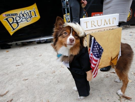 21 dog human costumes