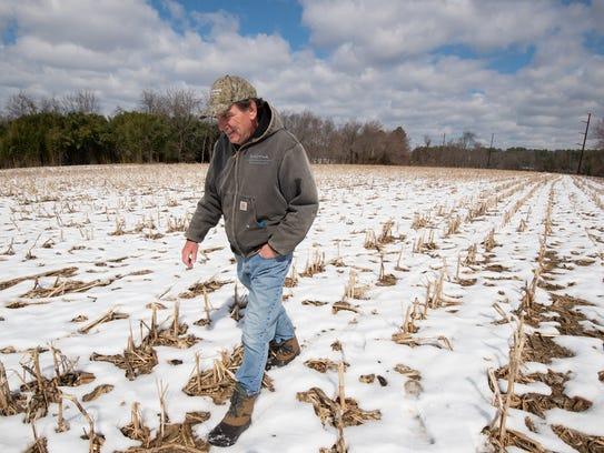 John Gillespie walks on part of his 130 acres of farm