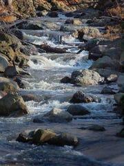 The Peckman River in Cedar Grove.