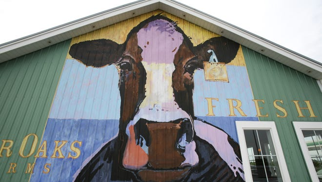 A large cow helps draw attention to a gas station and shop on the grounds of Fair Oaks Farms. Fair Oaks Farms is actually ten farms combined into a mega working farm and tourist attraction located just off of I-65 north of Rensselaer.