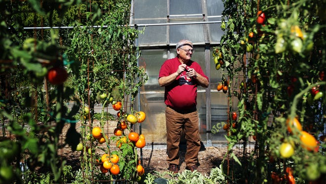 Master gardener Harry Olson volunteers at Oregon Garden by tending to an edible garden plot filled with tomatoes, watermelons, eggplant, rosemary and basil.