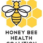Bee coalition unveils videos to help beekeepers combat parasites