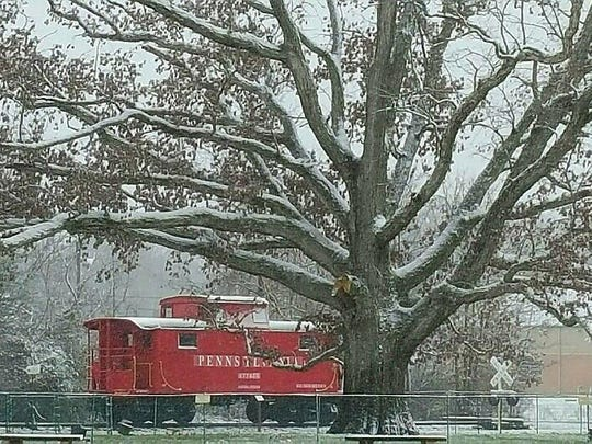 This wintertime photo shows the amount of very large branches on the 235-year-old white oak tree in Saw Mill Park.