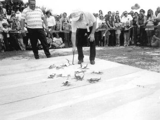 Florida Seafood Festival Blue Crab Race from 1973.