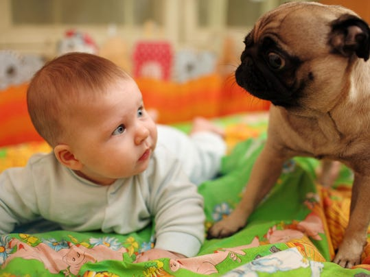 Introducing your dog to your baby: There's a class for that