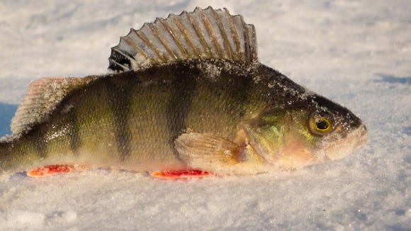 It's time to wrap up ice fishing for another season.