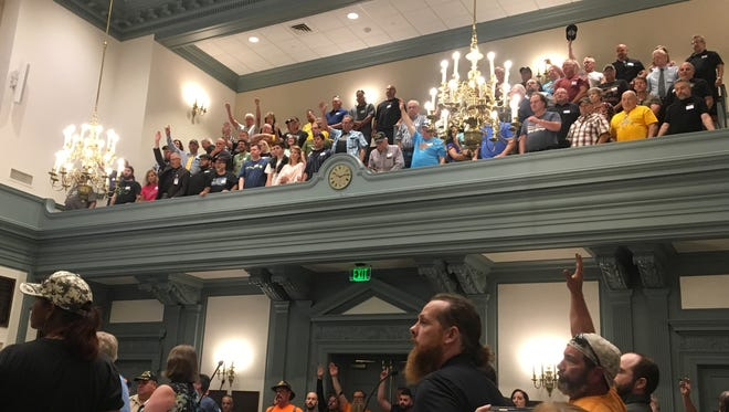 Opponents of a assault weapons ban stand in the chambers of the Delaware Senate on Wednesday.