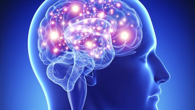Is belief hardwired into our brains? Are there God genes or neurons? Did God wire us to seek him? Why do we think of God?