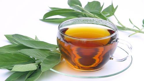 Tee Salbei - tea sage