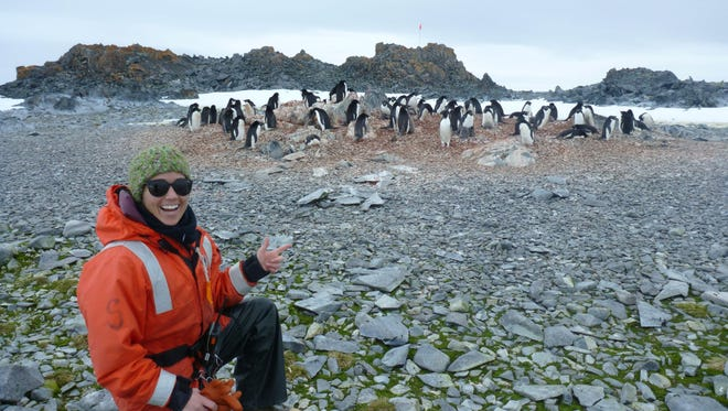 University of Delaware Doctoral researcher Megan Cimino at work with a colony of penguins near Palmer Station in Antarctica.