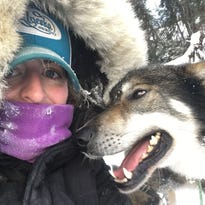Iowa woman finds solace from pain in dogs who will lead her in Iditarod
