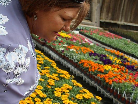 636617402836206766-PHOTO-1-Spring-Stroll---Rhonda-nursery.jpg