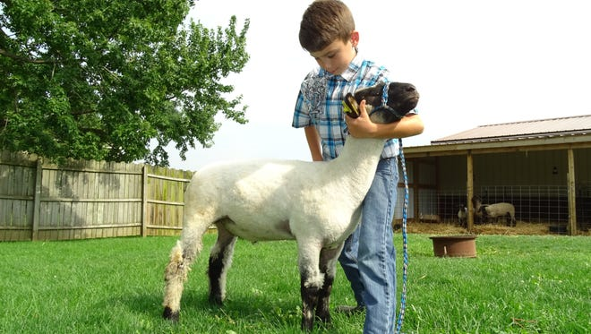 Jacob Wagner, 10, sets up his lamb, Poll, in preparation for the Crawford County Fair.