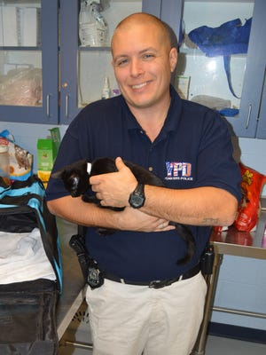 Yonkers Police Officer William Pataky is pictured with a 5-month old kitten he adopted Thursday, Dec. 1, 2016, after rescuing her earlier from an apartment where she had been abandoned.