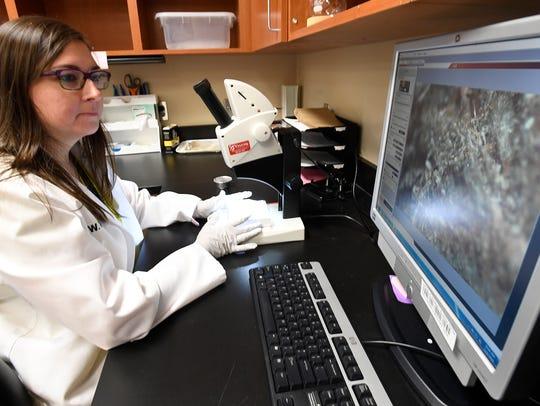 Forinsic Scientist Devin Bateman examines marijuana