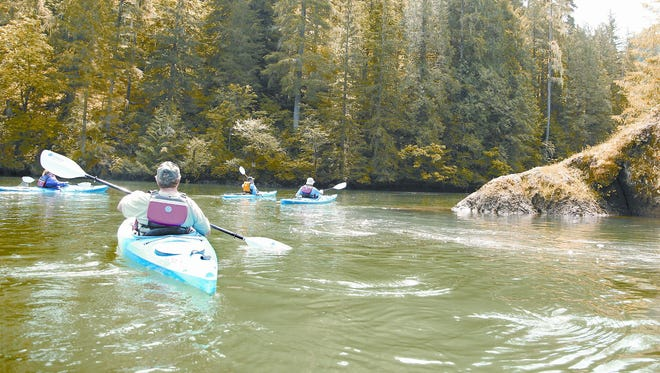 Kayakers paddle into the mouth of Canyon Creek at the upper end of Lake Merwin during a trip with Cascade Pack & Paddle.