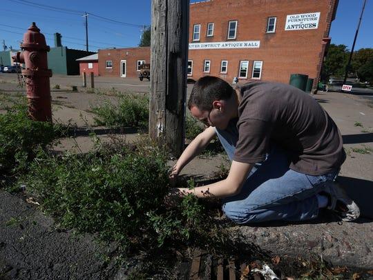 Neighborhood resident Trey Vernick, 14, cuts weeds