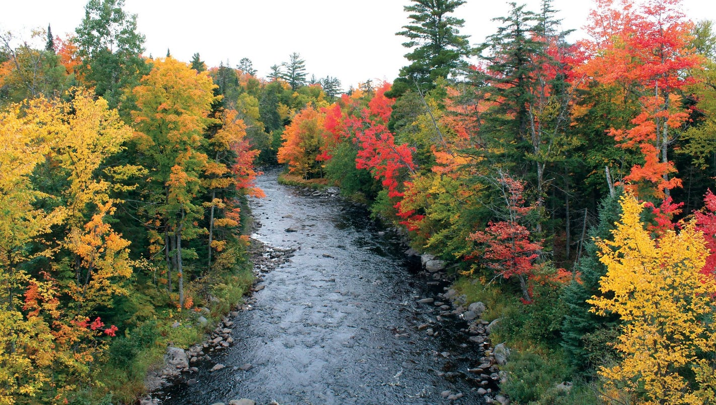 Top Fall Color Drives In Michigan And Dates To Go