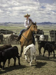 "Garrison Mitchell ropes cattle on a ranch near Cleveland, Montana. Sen. Jon Tester (D-Montana) called the USDA's recent withdrawal of proposed regulations on the meat packing industry ""bad news for small producers."": TRIBUNE FILE PHOTO"