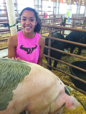 Addi Heinson poses with her pigs from a previous fair. Heinson will show pigs, a steer, and enter photographs this year at a limited 2020 Kiowa County Fair in Greensburg.